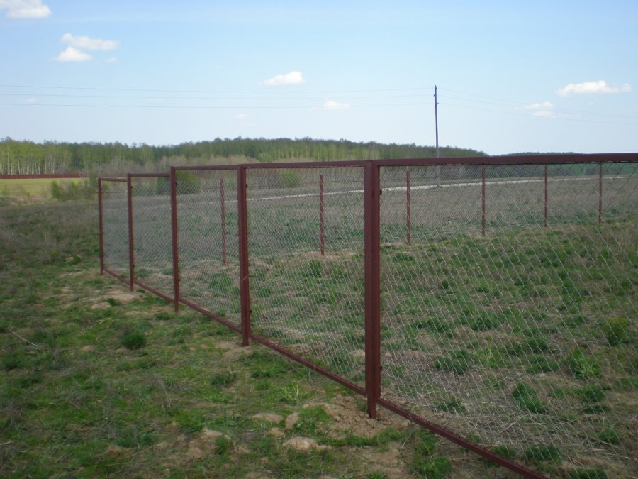 Бюджетный дачный забор из рабицы