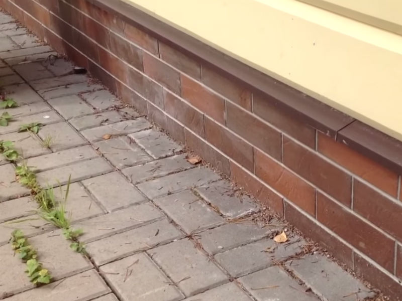 Отмостка дома из тротуарной плитки